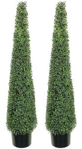 Two 5 foot Artificial Tea Leaf Cone Tower Topiary Trees Potted