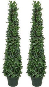 Two 4 foot Artificial Tea Leaf Cone Tower Topiary Trees Potted