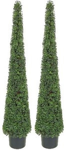 Two 6 foot Artificial Tea Leaf Cone Tower Topiary Trees Potted