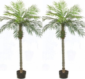 2 ARTIFICIAL 7u0027 PHOENIX PALM TREE PLANT SILK BUSH POOL PATIO DECK  ARRANGEMENT POTTED