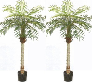 2 ARTIFICIAL 5u0027 PHOENIX PALM TREE PLANT SILK BUSH POOL PATIO DECK  ARRANGEMENT POTTED