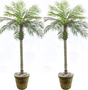 2 Artificial Phoenix Palm Tree 7u0027 Bush Plant Patio Deck Pool In Basket Areca