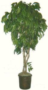 Artificial 7u0027 Mango Tree Plant Bush Basket Arrangement Topiary Palm Patio  Flower