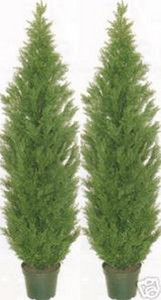 Outdoor Artificial Cedar Topiary Trees 9 foot Two Potted