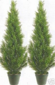 Two 3 foot Outdoor Artificial Cedar Cypress Topiary Trees Potted UV Rated Plants