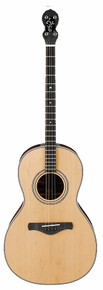 1920s Tenor guitar by Don Rickert Musician Shop (D. Rickert Musical Instruments), set up for Irish Traditional Music