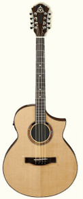 Professional Performance Acoustic-Electric Mandocello by Don Rickert Musician Shop (D. Rickert Musical Instruments)