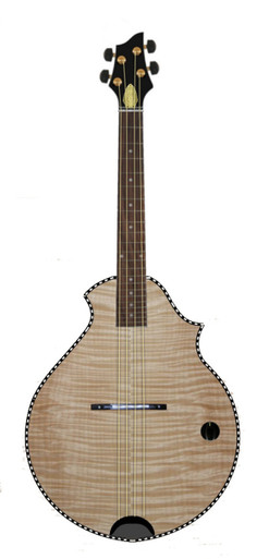 M-1A Venetian Series Semi-Hollow Body Electric Mandolin by D. Rickert