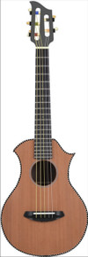 Alto Melodic Guitar Deluxe Version luthier-built by D. Rickert Musical Instruments in Hiawassee, Georgia, USA