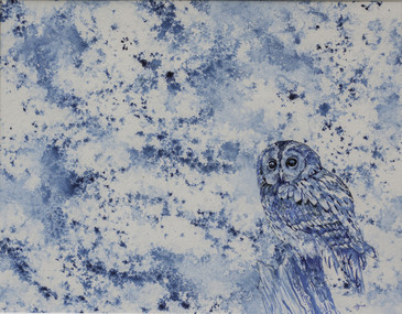 Tawny Owl Ink Drawing