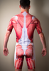 Muscle Cycling Kit