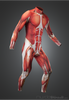 Muscle Skin Suit long