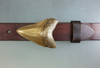 Shark's tooth 1.5 in bronze natural patina shown on 1.25 belt