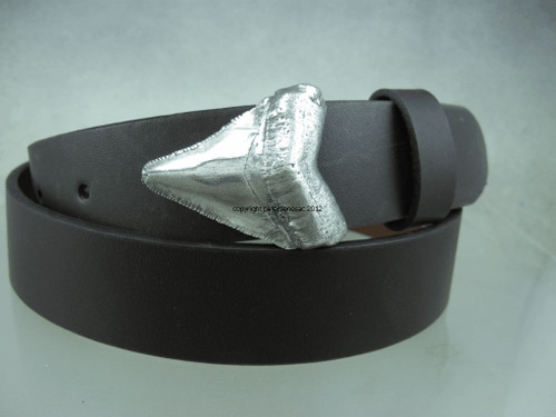 Sharks tooth buckle in sterling