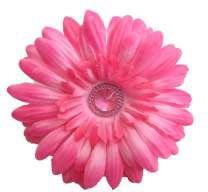 Pink Clip Flower