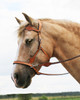"Tan Leather (Note: reins shown are the ""Dallas"" Leather split reins, see Related Products below) The Dandy bridle comes standard with plain continuous leather reins in the matching leather colour."