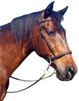 Finely finished with punched & braided leather with soft leather under neck part, broadband and noseband. Comes with quality leather reins.