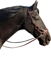 """""""Flandy"""" Bitless Leather Bridle"""