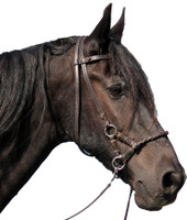 """Pariba"" Bitless Leather Bridle"
