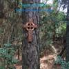 Celtic Cross of Irish Harmony pyrography by Signs of Spirit