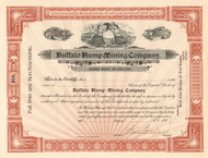 Buffalo Hump Mining Company stock certificate circa 1900 (New York)