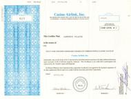 Casino Airlink Inc. 1999 (gambling travel company)