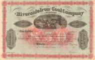 Riverside Iron and Coal Company stock certificate circa 1877 (Pennsylvania)