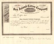 Sea Island Cotton Company Company stock certificate 1890's (New York)