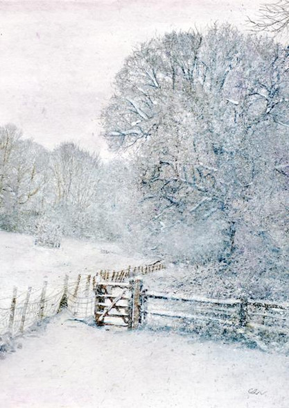 Winters Walk Seasonal Card
