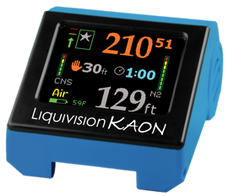 Liquivision Kaon