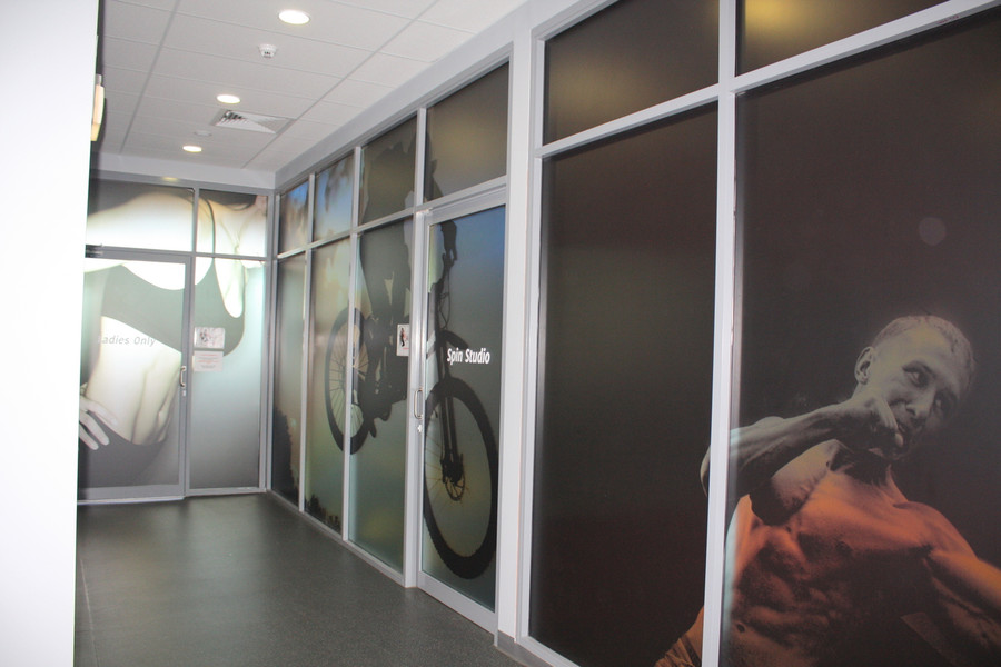 Frost Print Window Graphics