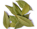 As a tonic for the digestion system that can help relieve gas and cramping and stimulate the appetite. Also used for treating infections, sore throat, rheumatism, tonsillitis, and bladder problems. Useful as a treatment for migraines.