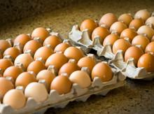 Flat of 2.5 dozen eggs
