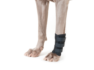 Back on Track® Shin/Leg Wraps