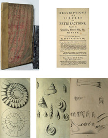 Rare Paleontology Book by John Walcott; Descriptions and Figures of Petrifications Found in the Quarries....Near Bath
