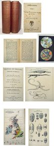 Geology and Paleontology books by Phillips, John; Manual of Geology, 2 volumes.