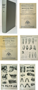 Rare fossil man book, Weidenreich, Franz; The Dentition of Sinanthropus Pekinensis