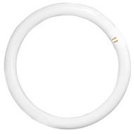 Xenico 40w T9 Circular Fluoro Tube 5000K Cool White