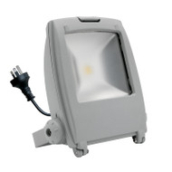 Mercator Napier 50w 5500K LED Flood Light Silver