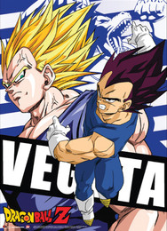 Dragon Ball Z Vegeta Fabric Poster (Wall Art)