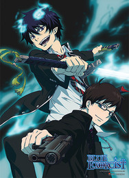 Blue Exorcist: Rin & Yukio Battle Fabric Poster (Wall Art)