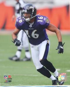 David Reed Ravens 8x10 Photo