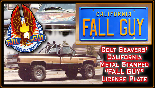 """License Plate - FALL GUY - """"FALL GUY"""""""