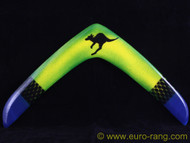 Free Flyght Boomerangs DS 3 RIGHT HANDED (colour varies)