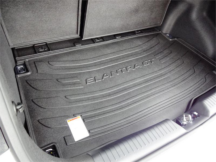 Hyundai Elantra GT Rubber Cargo Tray (E043)