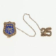 """MNS"" Nursing School Badge - 14k & 10k Yellow Gold Seed Pearls 25 Medical Pin"