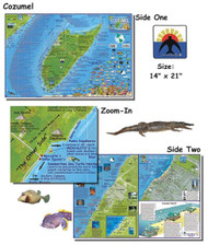 Waterproof Dive Site Map - Cozumel