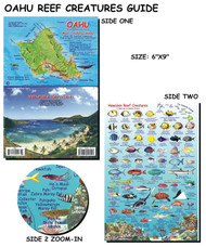 Waterproof Fish ID Card - Oahu Hawaii