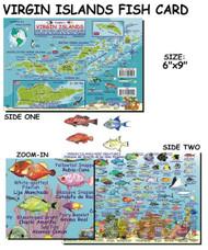 Waterproof Fish ID Card - Virgin Islands