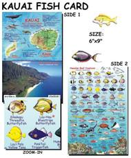 Waterproof Fish ID Card - Kauai Hawaii